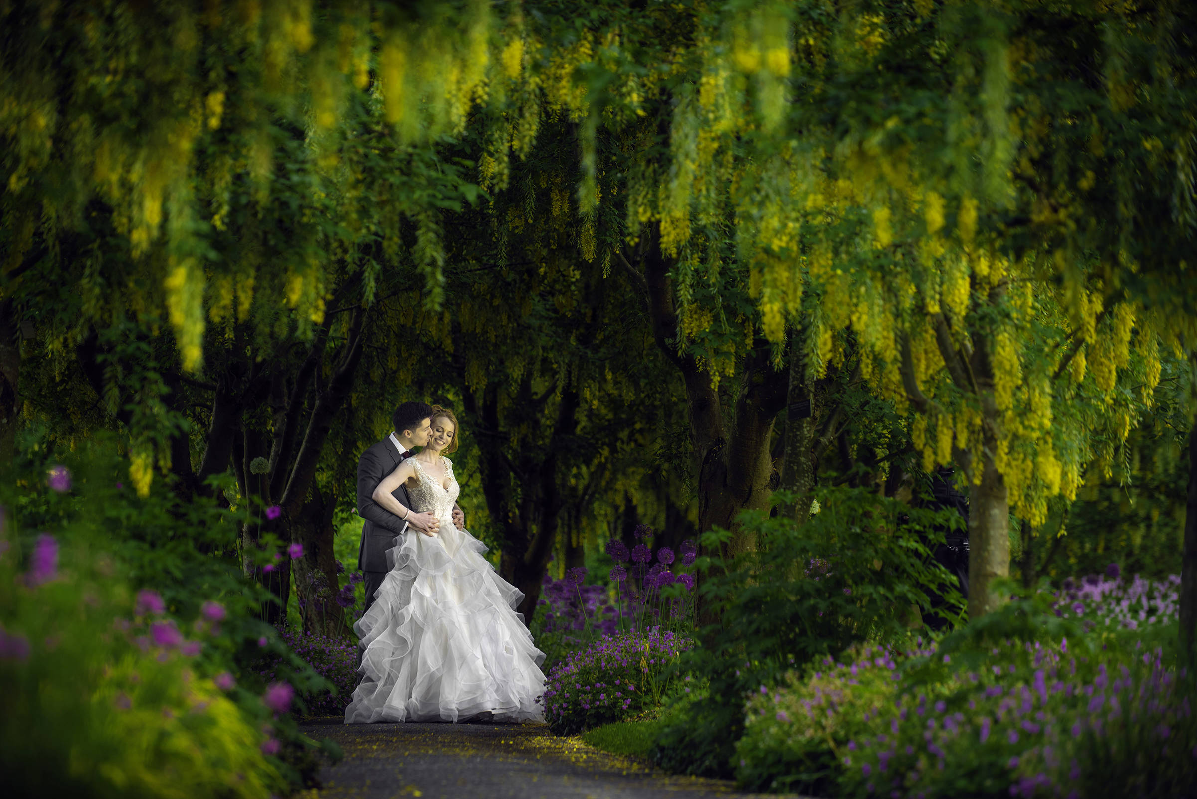 Van Dusen Gardens couple portrait under blooming wisteria - photo by David & Sherry Photography