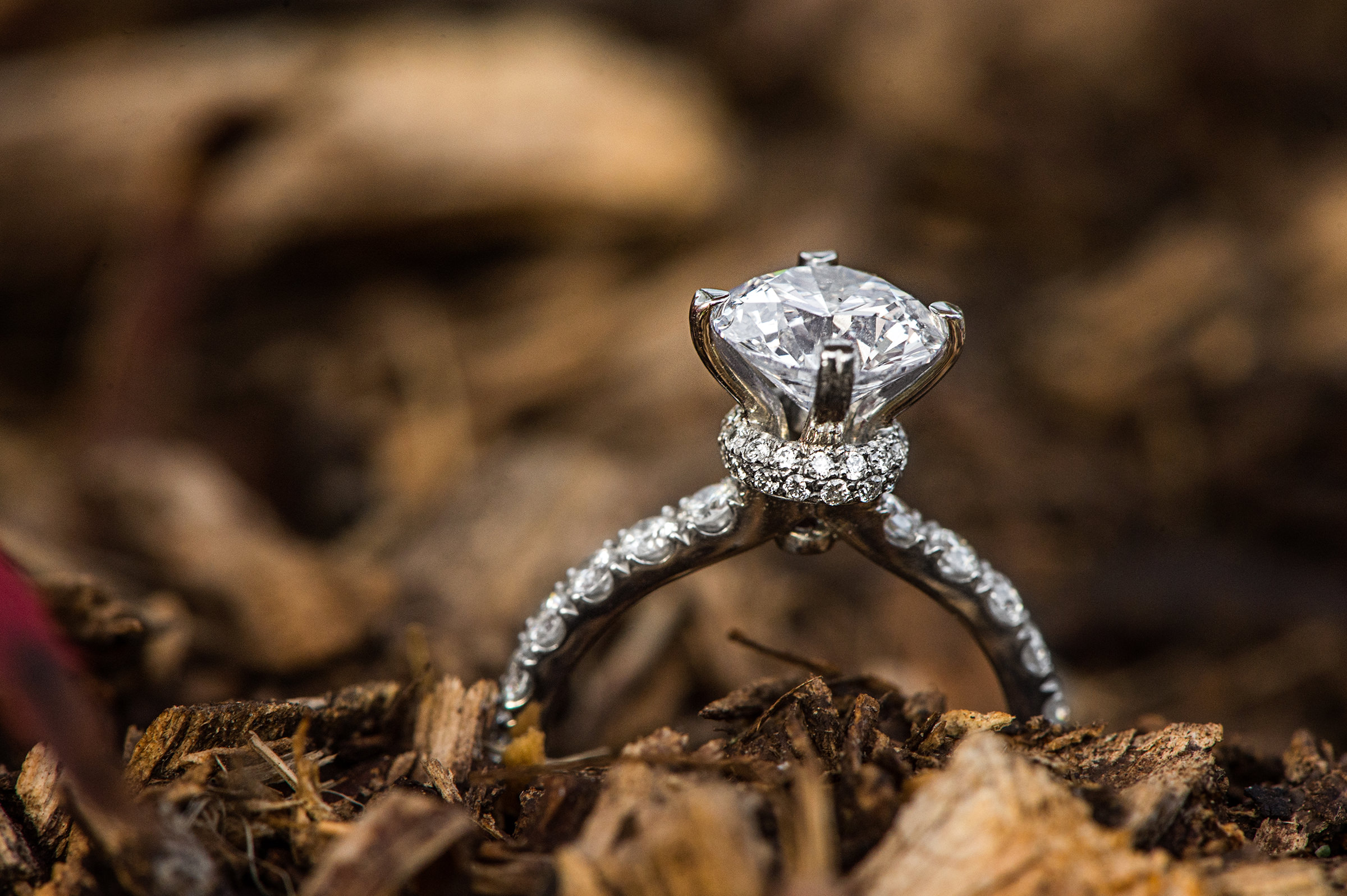 Diamond ring against leaves - photo by David & Sherry Photography