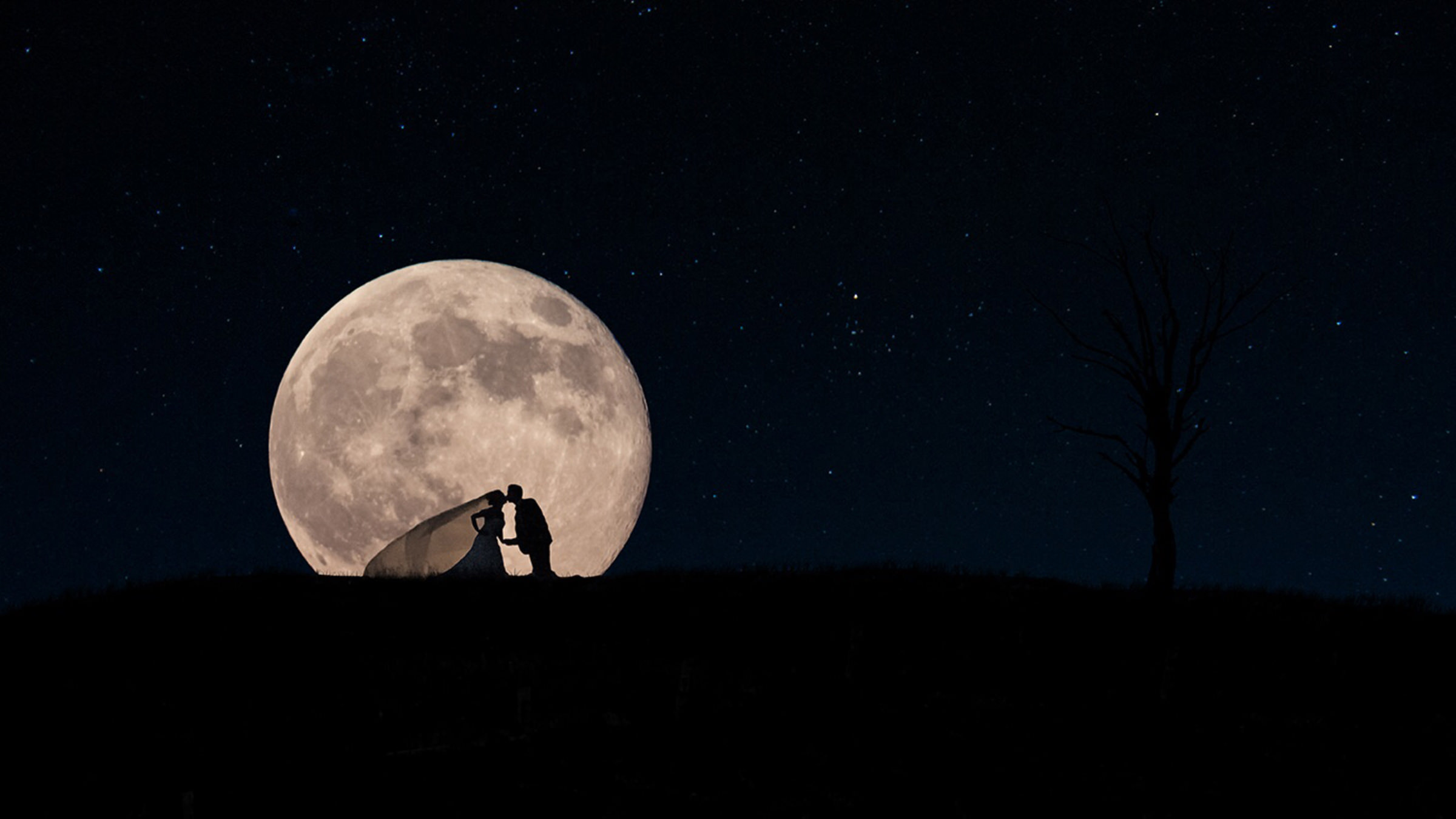 Fairytale bride and groom silhouette against gigantic moon - photo by David & Sherry Photography