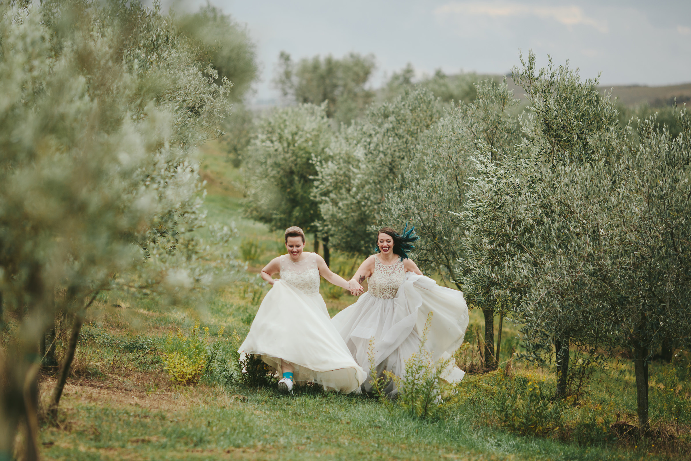 Brides frolic in olive grove - photo by Melia Lucida