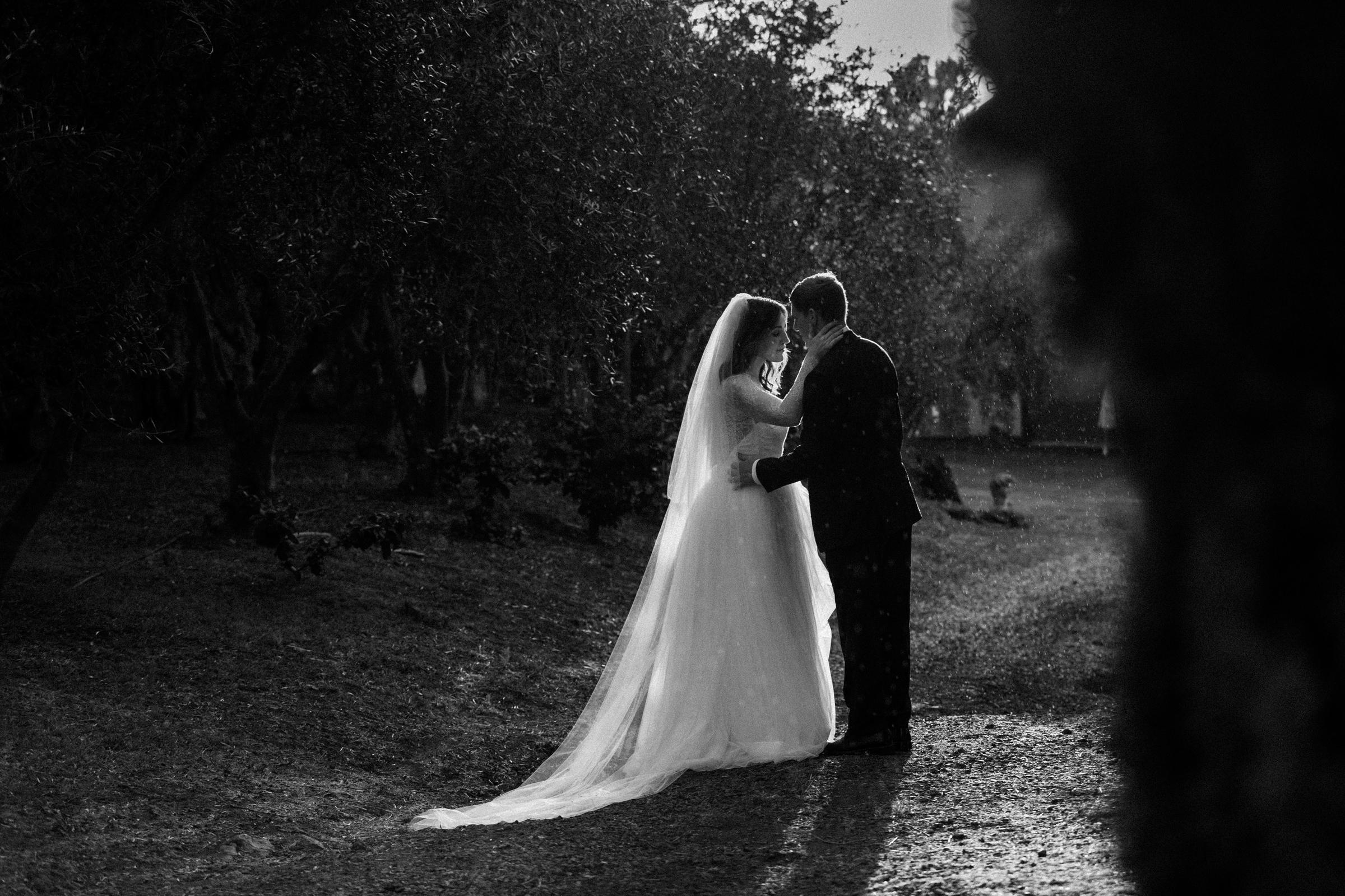 Calasa olive farm maui touching portrait of couple touching - photo by Melia Lucida