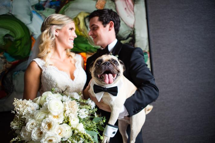 Boxer in bow tie steals the show - photo by La Vie Photo