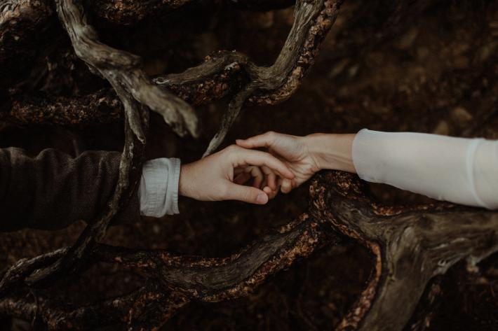 Bride and groom touch hands across tree roots - photo by The Kitcheners - Scotland